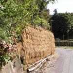 秋にははせ掛けの壁ができます。2004/10/28